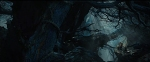 Desolation-of-Smaug-OfficialTrailer-13Forest-Jun1113GratianaLovelaceCap