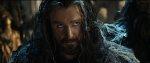 King Under the Mountain Thorin Oakenshield