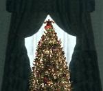 ChristmasTreeinThorntonManorManip-vlcsnap-17h10m27s28--Dec2513GratianaLovelaceCap-mask-manip6final