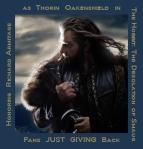 FansJustGivingBack1--HonoringRichardArmitageasThorin-inTHDofSNov2313GratianaLovelace_900x941