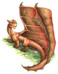Dragon--Baby-isCopper-Dragon-dragons_Dec2715fanpop